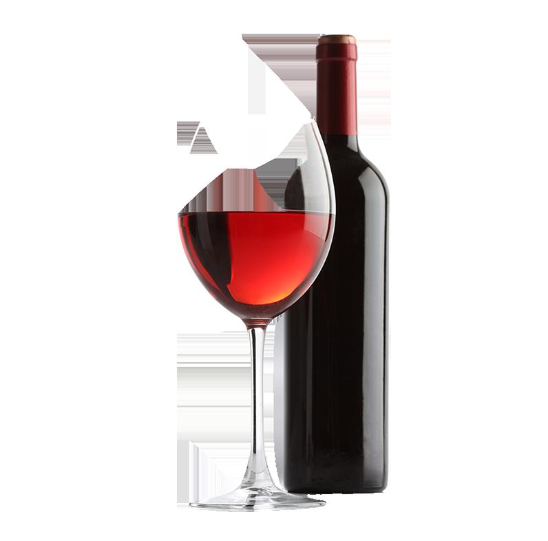Una inmersión en el mundo del vino