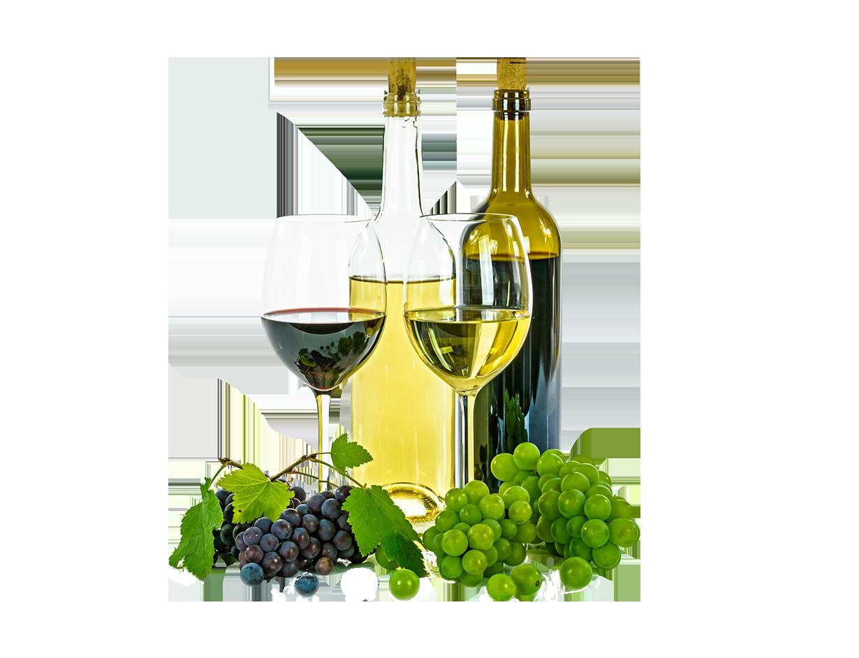 Vinos, sabores y aromas